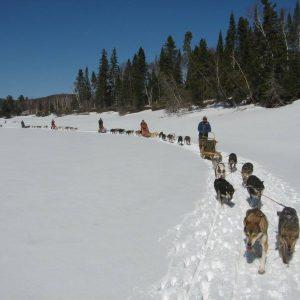 Traineau à chiens au Canada